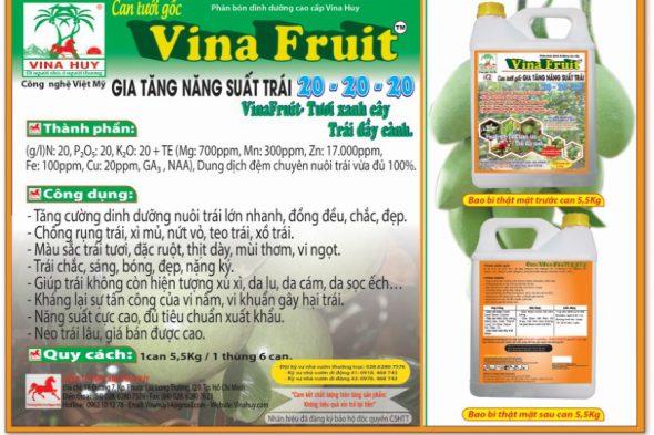 VINA FRUIT 5L