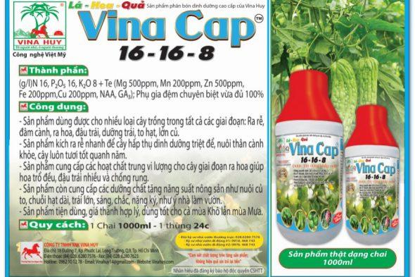 VINA CAP